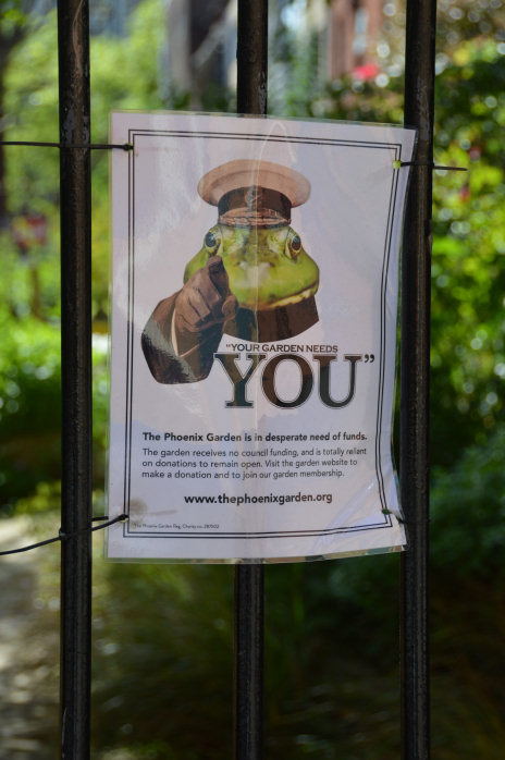Your Garden Needs You