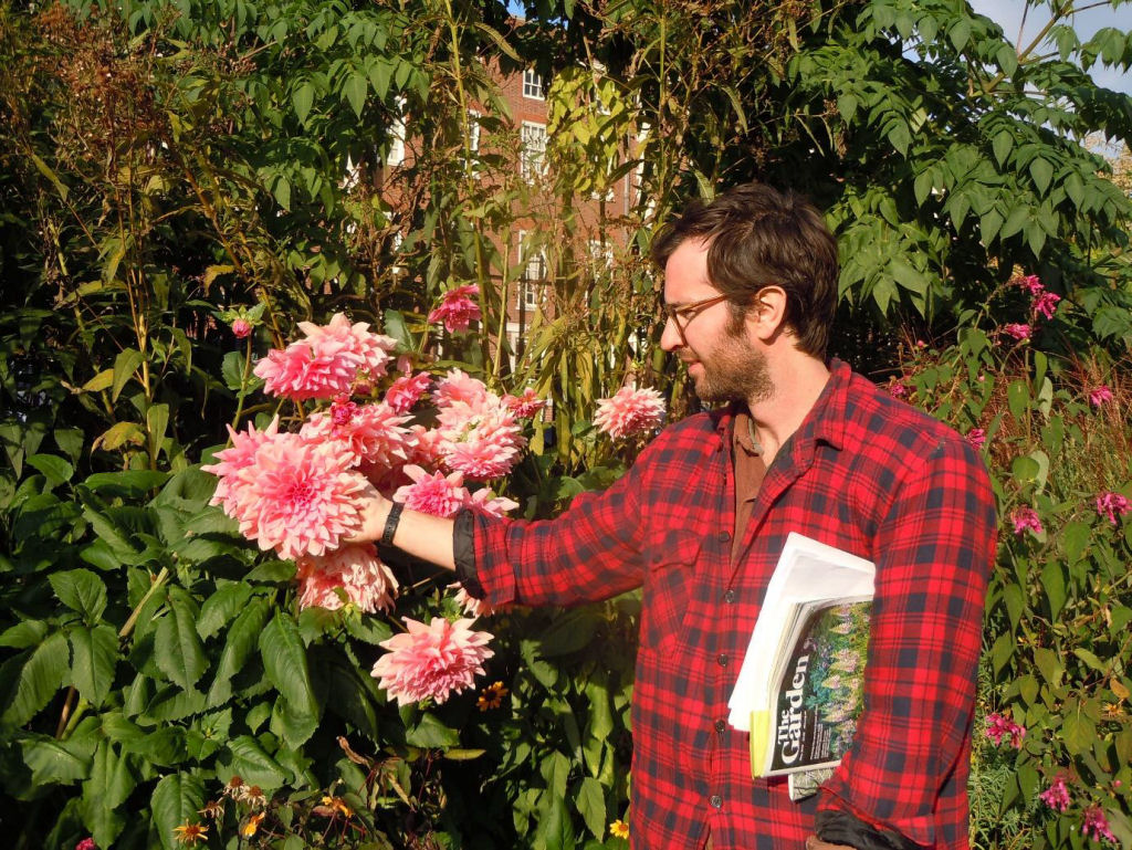 Sean displays and gives scale to huge Dahlia heads in the High Border!